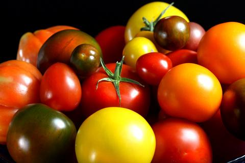 Richness of Food II © Liz Collet